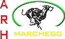 ARH - Austrian Racing Hounds - Marchegg